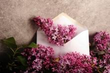dreamstime_xs_182601025RandiGraceNilsberg_Lilacs